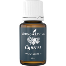Young Living Cypress Essential Oil
